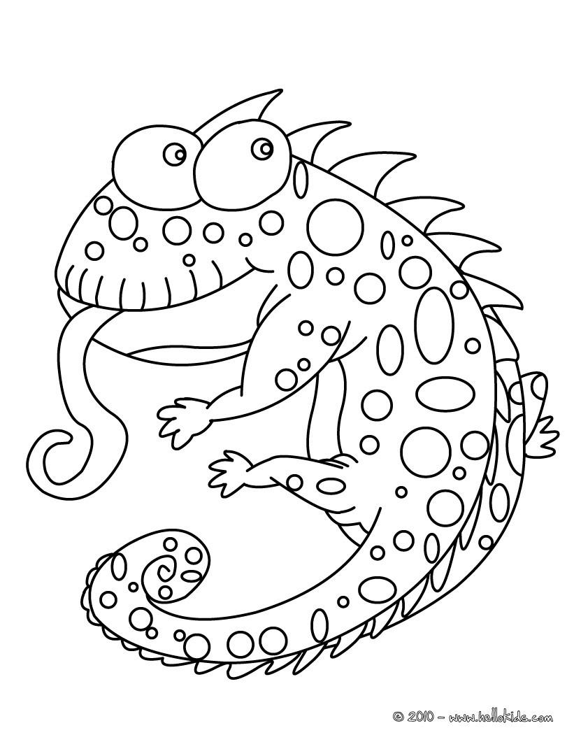 Jackson's Chameleon coloring, Download Jackson's Chameleon