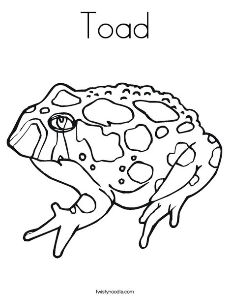 Colorado River Or Sonoran Desert Toad Coloring Page