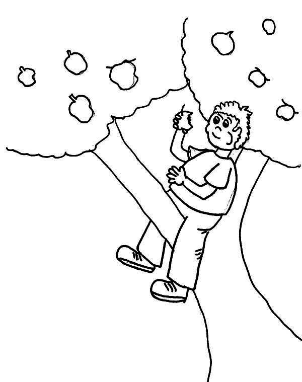 Climbing Tree coloring, Download Climbing Tree coloring