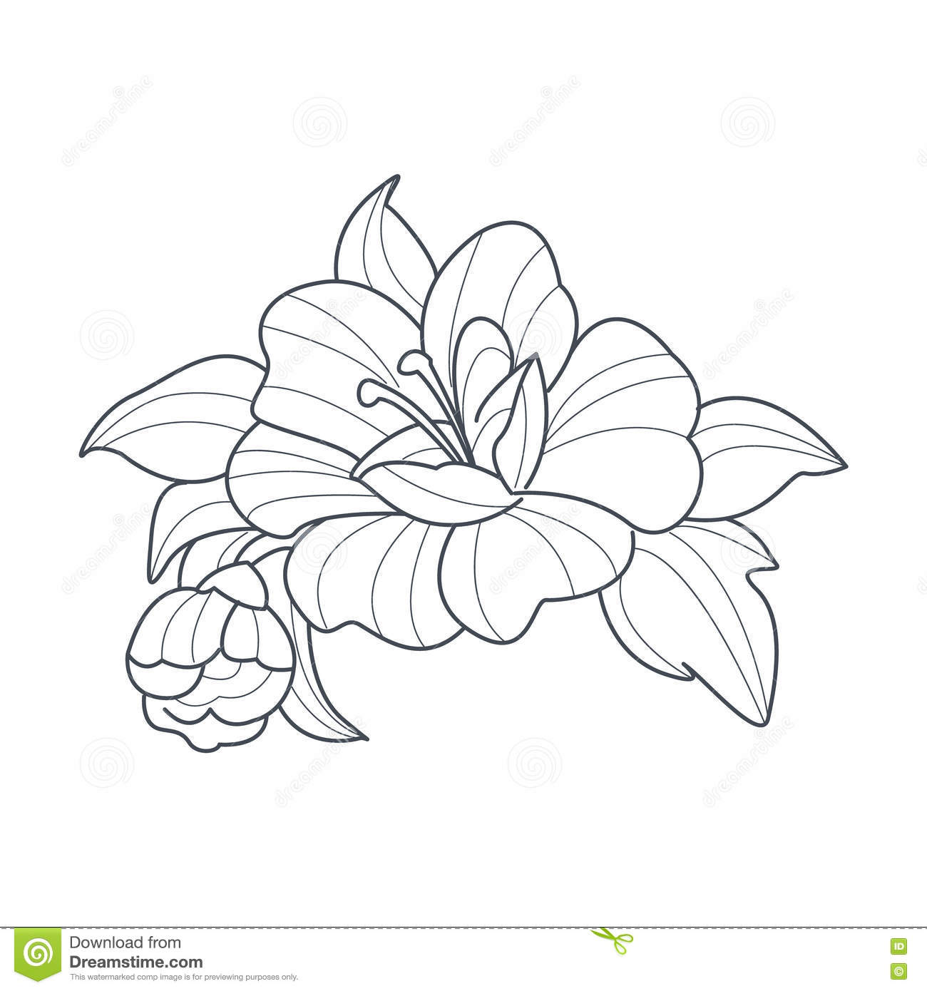 Dogrose Coloring Download Dogrose Coloring