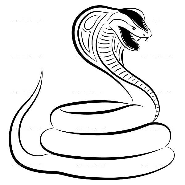 Anger Snake