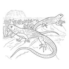 Green Iguana coloring, Download Green Iguana coloring