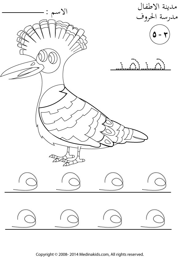 Hoopoe coloring, Download Hoopoe coloring for free 2019