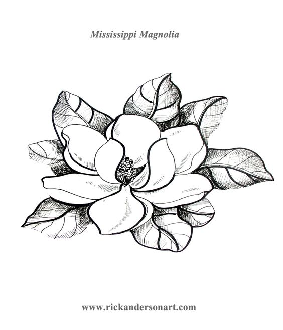 Download Magnolia coloring for free - Designlooter 2020 👨🎨