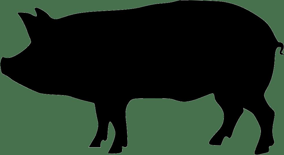 Download Pig svg, Download Pig svg for free 2019