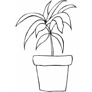Pot Plant coloring, Download Pot Plant coloring for free 2019