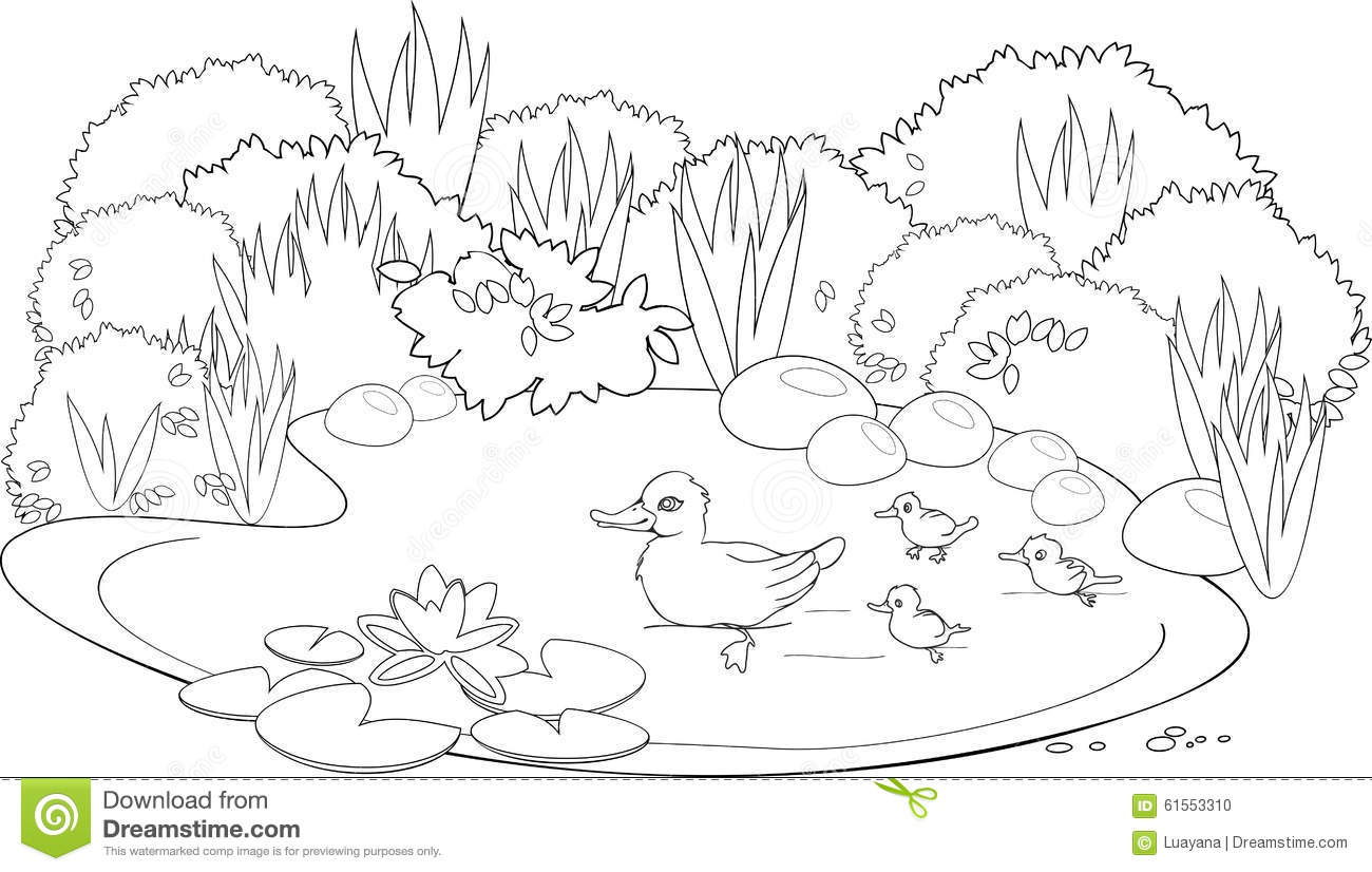 Pond Coloring Download Pond Coloring