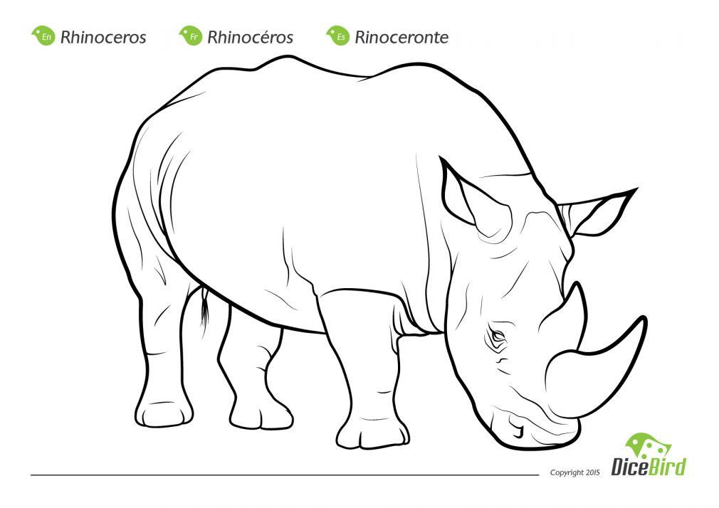 Rhinoceros Beetle coloring, Download Rhinoceros Beetle