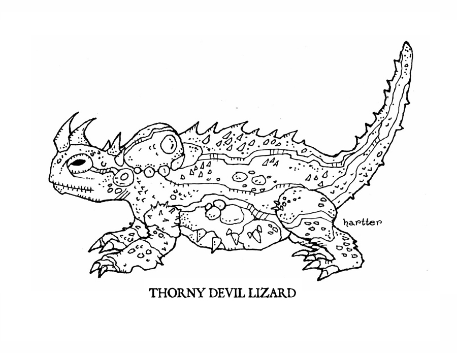 Thorny Devil clipart, Download Thorny Devil clipart for