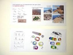 Design Luminy Chen-Wang-Dnsep-2011-0 Chen Wang - Dnsep 2011 Archives Diplômes Dnsep 2011  Chen Wang