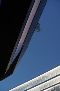 Design Luminy GYRE3 Lucie Evans-Trébuchet – TOKYO – Flânerie urbaine Séjours Erasmus Stages Work in progress  Lucie Evans-Trébuchet Japon