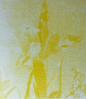 Design Luminy Jade-rousset-erasmus-2-19 Jade Rousset – École Massana – Barcelone Barcelone École Massana Séjours Erasmus Work in progress  Textile motif Massana Jade Rousset