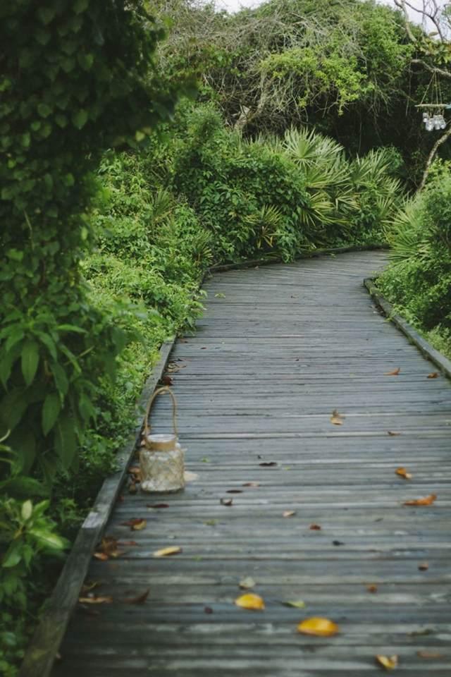 allee de jardin en bois esthetique et