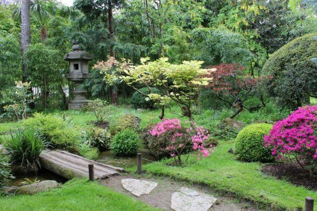 Entretien jardin quelques conseils pour un meilleur rsultat