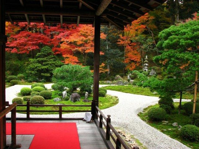 Jardin japonais  le monde vert du pays du soleil