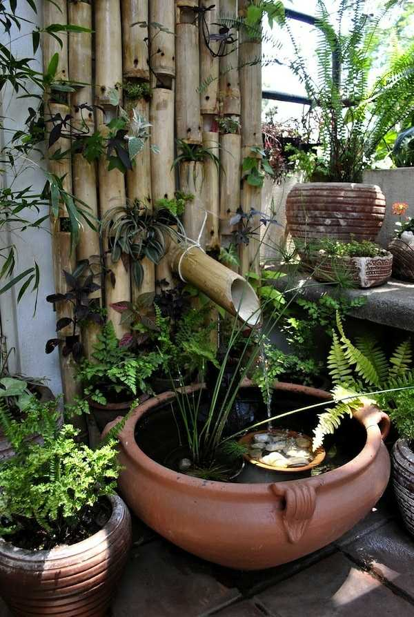 Mini bassin original pour plantes aquatiques