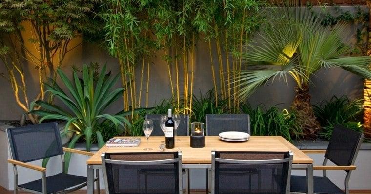 jardin avec du bambou