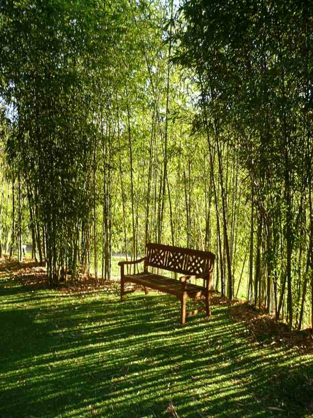 Salon Jardin Bambou Soldes