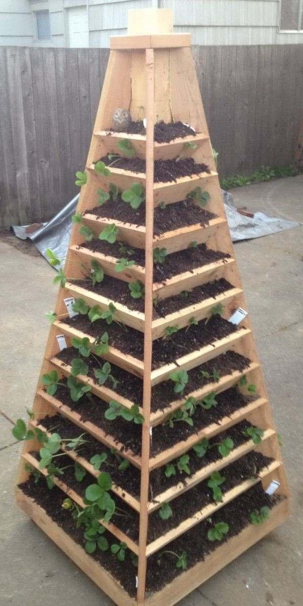 Jardin vertical un amnagement de lespace optimal