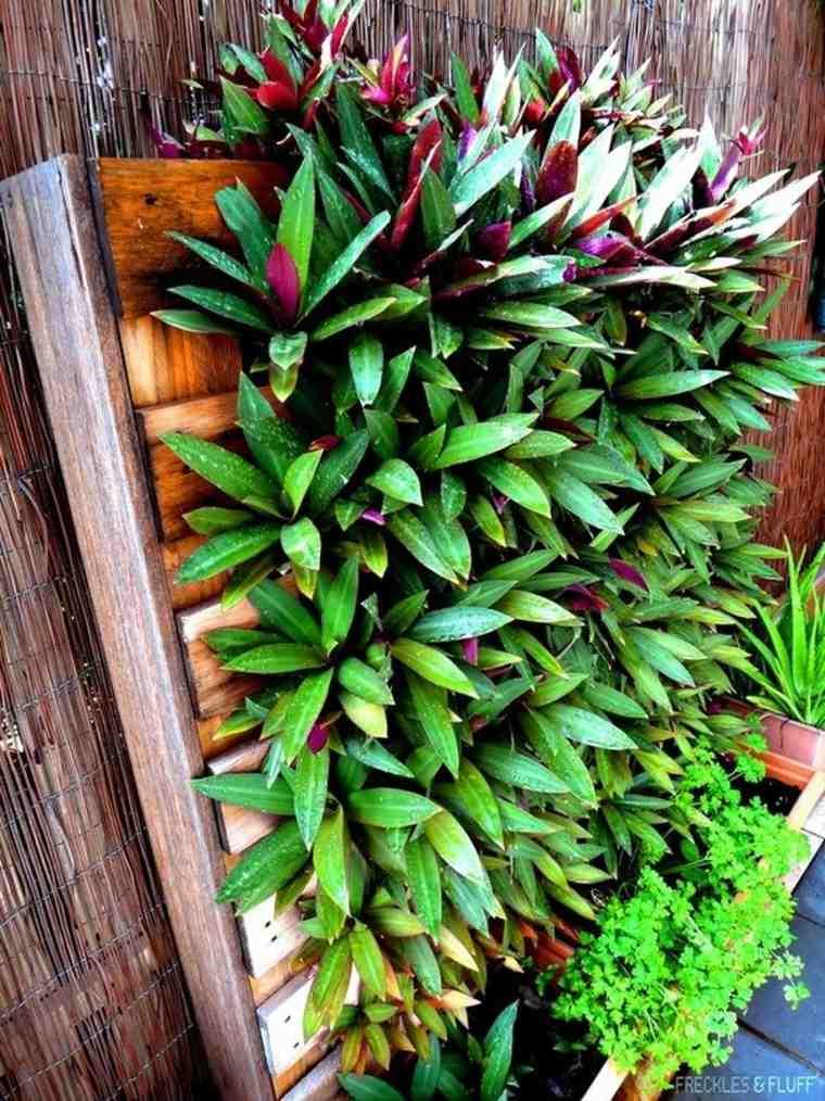 Jardin vertical intrieur et extrieur  un vrai gain de place