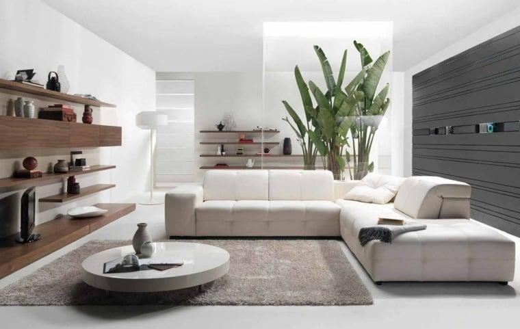 deco salon blanc pour un interieur