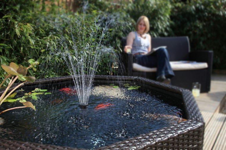 Jardins aquatiques  101 ides de bassins et de fontaines extrieurs
