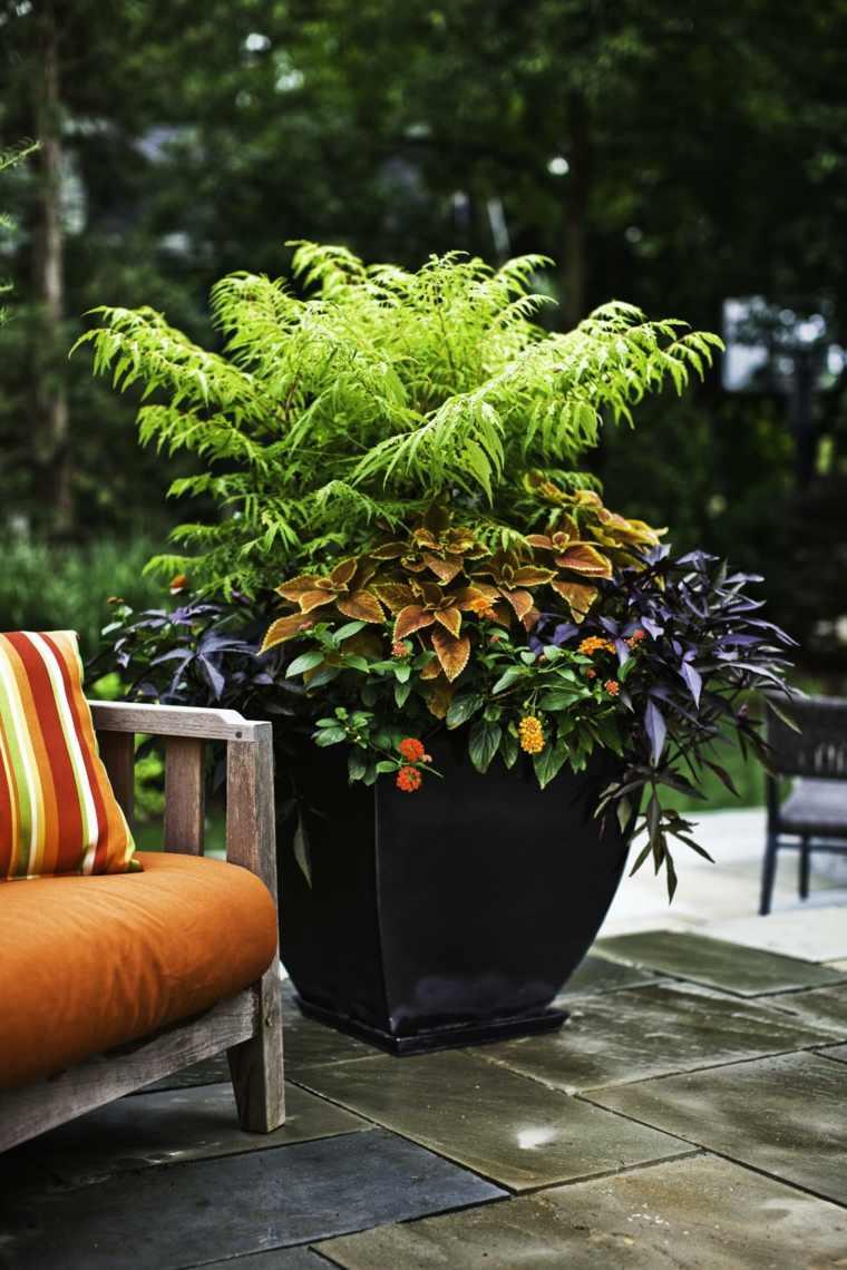 Plante extrieur en pot en 35 ides dco