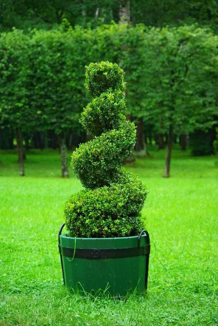 Dcoration de jardin  adoptez lart topiaire