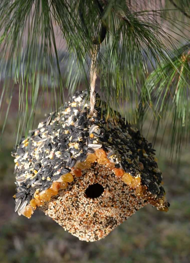 Nichoir  oiseaux maison et mangeoire  fabriquer soimme