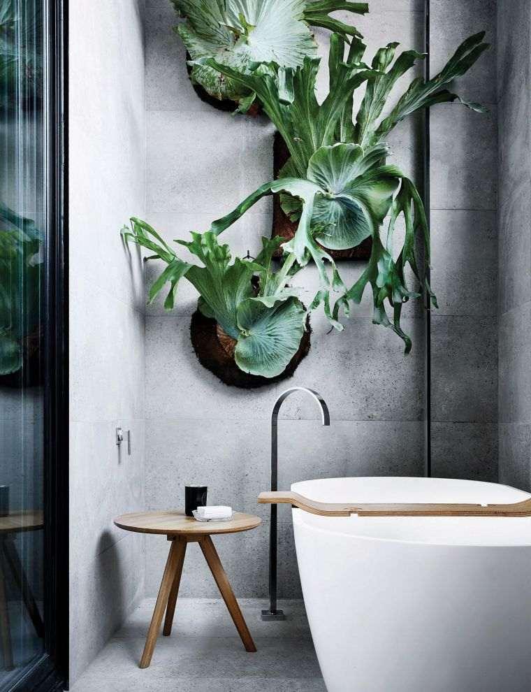 meilleures plantes vertes salle de bain