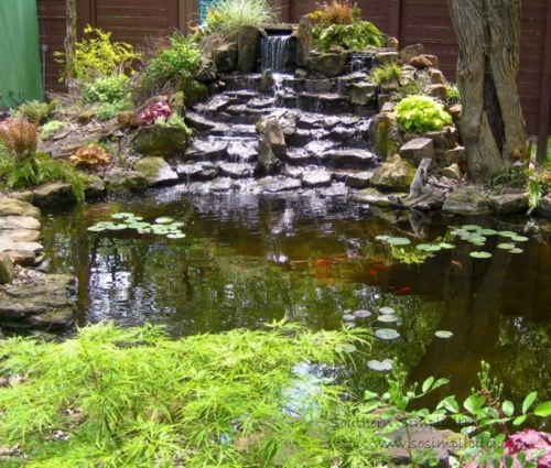 Small Fishpond Design