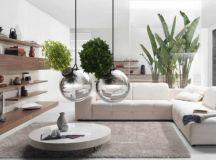 Plantes suspendues fonctionnelles et décoratives