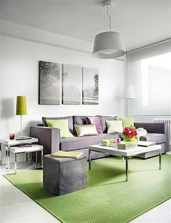 salon moderne en vert et gris