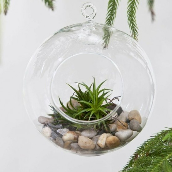 Le Terrarium De Printemps Un Morceau De Nature La Maison