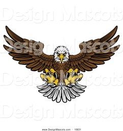 illustration of a fierce swooping bald eagle mascot with talons extended flying forward [ 1024 x 1044 Pixel ]