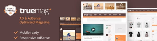 Build a Successful AdSense Optimized Website with Truemag