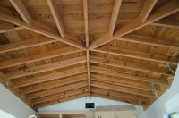 BEAM CEILING LIGHTING  Ceiling Systems