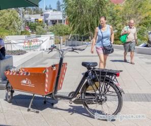 Electric Cago Bikes 2