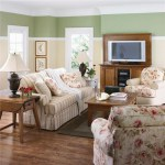 Paint Color Ideas For Living Room MphD