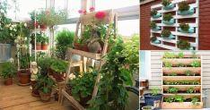 Creative Balcony Garden Ideas
