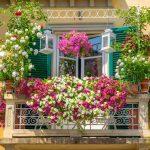 Pink Balcony Ideas