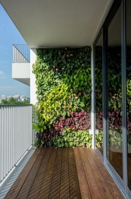 Get Balcony Green Wall Ideas PNG