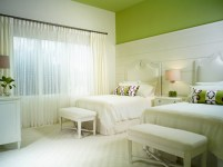 11+ Racing Green Bedroom Ideas PNG