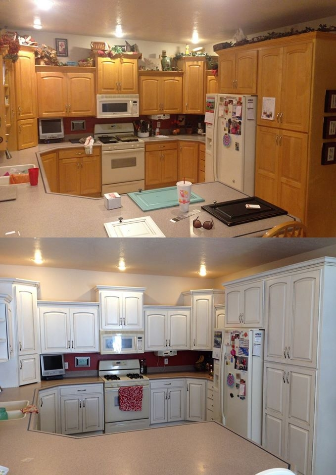 Snow White and Van Dyke Brown Kitchen Cabinets  General