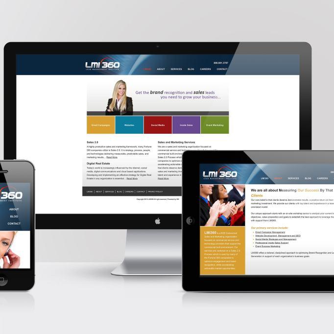 LMI360 Website Development