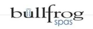Bullfrog Spas_Logo