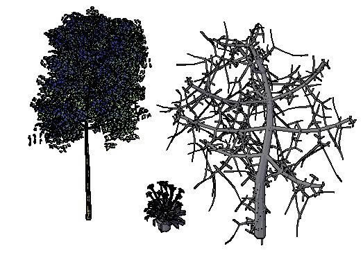 Trees and House Plants 3D DWG Model for AutoCAD • Designs CAD
