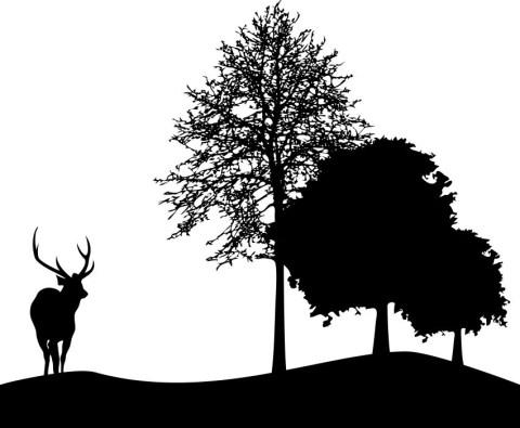 Deer-And-Tree-Silhouette-DXF-File.jpg