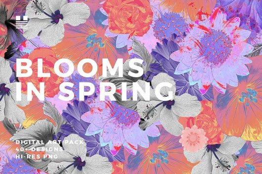 Blooms in Spring - Flower Backgrounds