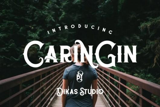 Caringin - Modern Serif Font